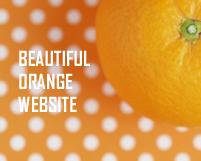 目の覚めるようなオレンジ色が美しいサイト23個